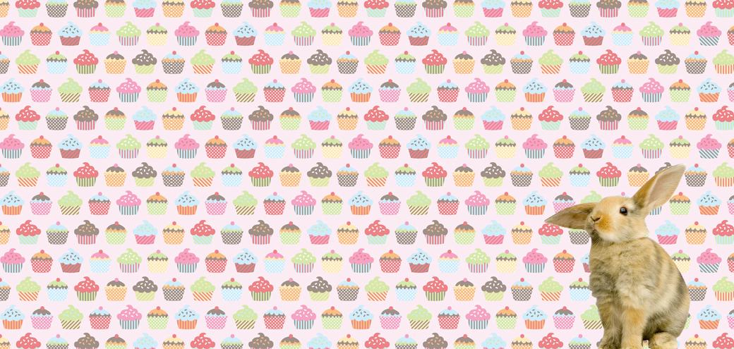 Cupcake_Banner_Rabbit_1040x495